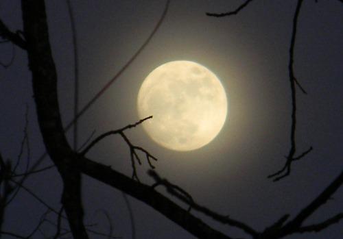 moon_full_2